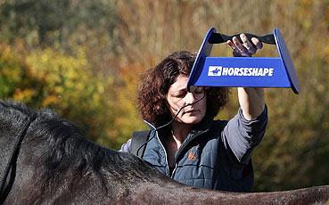 Horseshape 3D-Scan